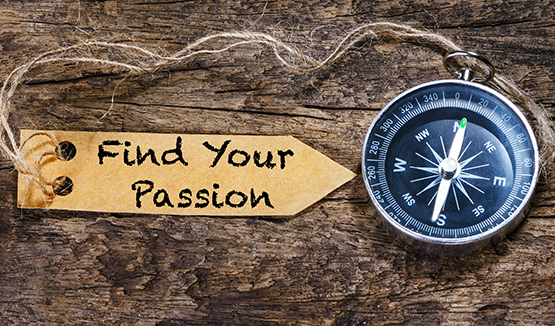 career portal find your passion